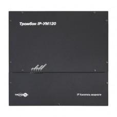 Тромбон  IP-УМ120 Усилитель