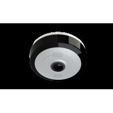 RVi-1ACF210A (1.85) Мультиформатная аналоговая камера