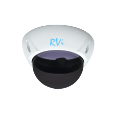RVi-1DS2w Тонированный купол