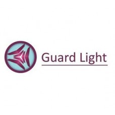 Iron Logic Guard Light - 1/50L Лицензия